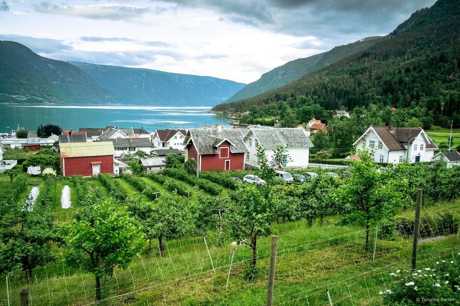 Norvege-2013-053